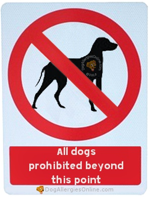 Allergic to Dogs Prevention - Setting Boundaries