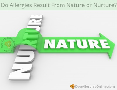 Allergies Nature or Nurture