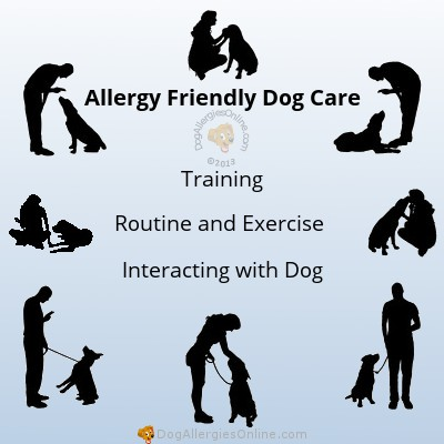 Allergy Friendly Dog Care