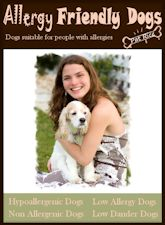 Allergy Friendly Dogs -Dogs Suitable For People With Allergies - Pat Rice