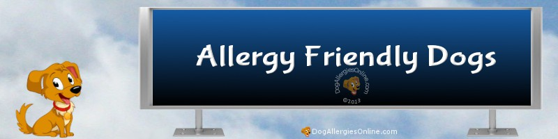 Allergy Friendly Dogs