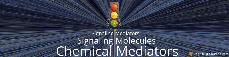 Chemical Mediators Associated With Allergies