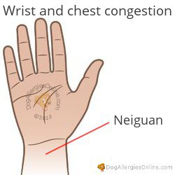 Chest Congestion and Acupoints - Wrist