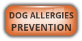 Dog Allergies Prevention
