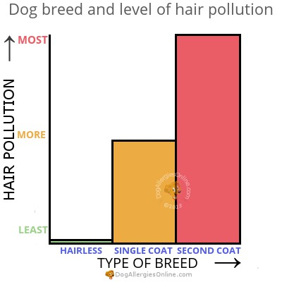 Dog Breed and Hair Pollution