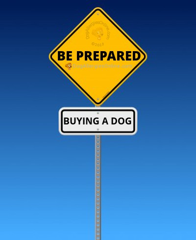 Dog Breeders and Buying an Allergy Friendly Dog
