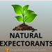 Natural Expectorants and Allergies