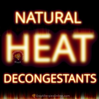 Natural  Decongestants and Heat