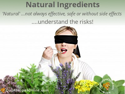 Risks of Using Natural Expectorants