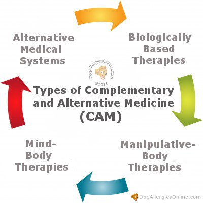 Types of Complementary and Alternative Medicine (CAM)