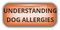 Understanding  Dog Allergies