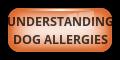 Understanding  Dog Allergies